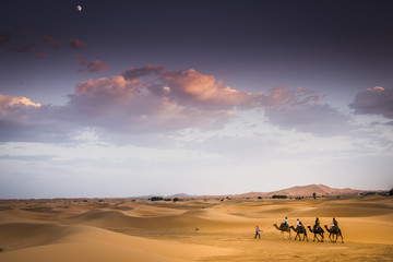 Fotobehang Marokko Carovana nel Deserto