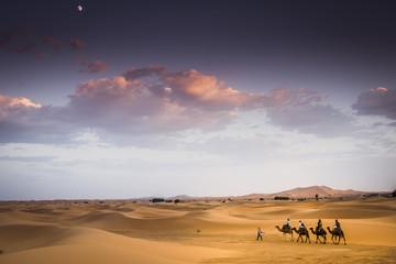 Carovana nel Deserto