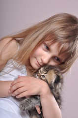 child hugging a small Scottish fold breed kitten