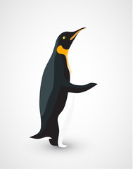 Penguin isolated on white