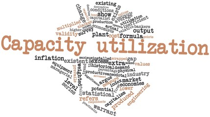 Word cloud for Capacity utilization