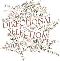 Word cloud for Directional selection
