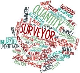 Word cloud for Quantity surveyor