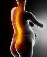 Pregnant woman with visible backbone concept