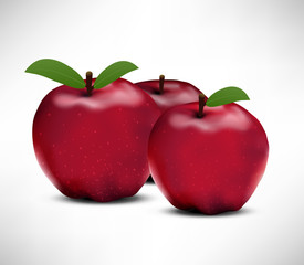 Apples Illustration