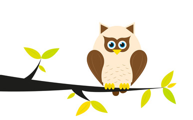Owl in a tree on white background.
