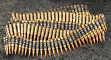 Wet Ammunition Bullets on a Rainy Day.