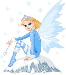 Foto auf Gartenposter Die magische Welt Winter fairy