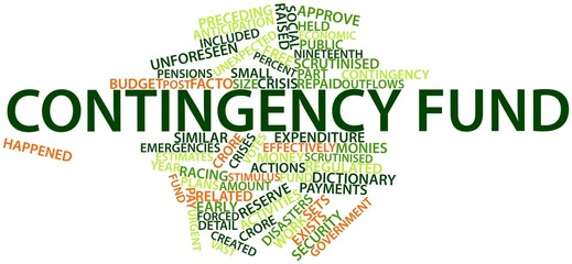 Word cloud for Contingency fund