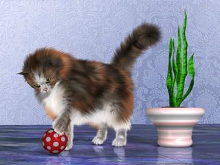 Oscar the House Cat