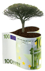 concept coût nature, protection des forêts