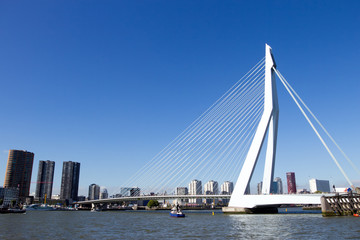 Spoed Fotobehang Rotterdam Erasmus bridge - Rotterdam