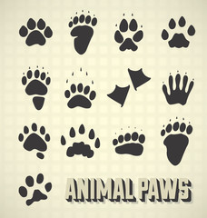 Vector Set: Paw Prints of WIld and Domestic Animals