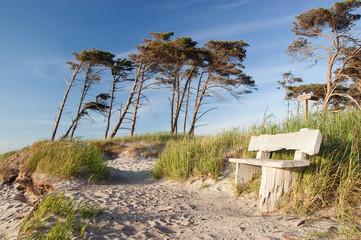 Bank am Weststrand, Prerow, Darss, Fischland, Ostsee