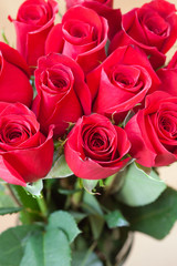 background of a beautiful bouquet of red roses