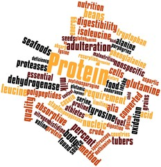 Word cloud for Protein