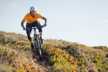 Mountain biker riding dirt trail Wall mural