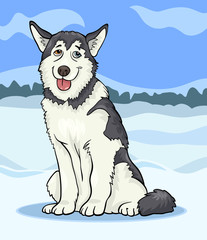 Stores photo Chiens husky or malamute dog cartoon illustration