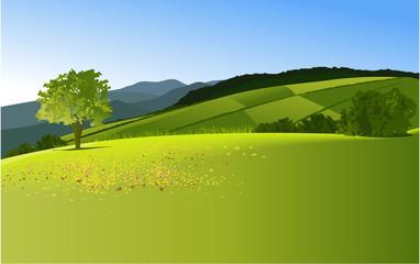 Foto op Canvas Pistache Country landscape with mountains