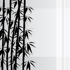 Wall Mural - Bamboo background