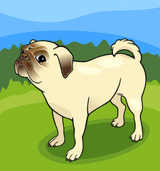 Poster Dogs pug dog cartoon illustration