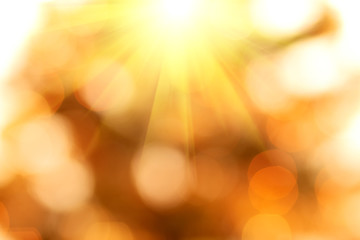 natural bokeh background with sun