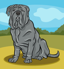 Poster Dogs neapolitan mastiff dog cartoon illustration