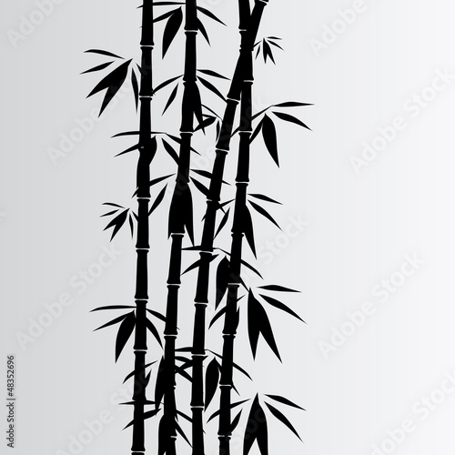 Fototapete Gray bamboo background