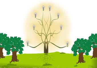 albero della luce
