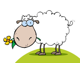 White Sheep Eating A Flower On A Hill