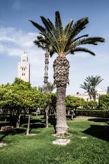 Morocco. Marrakech. Mosque of Koutoubia
