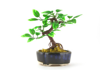 Artifical Bonsai tree