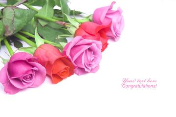 Roses postcard background