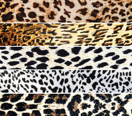 Set of Leopard textures