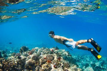 Fototapeta Snorkeling Underwater obraz