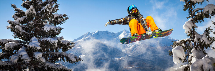 Garden Poster Winter sports snowboarder in the trees