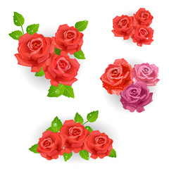 set of red roses bouquet