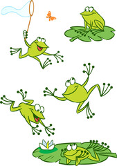 few green frogs