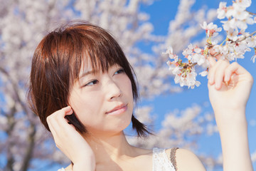 Lovely young girl / cherry blossoms