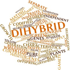 Word cloud for Dihybrid cross