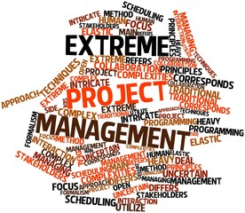 Word cloud for Extreme project management