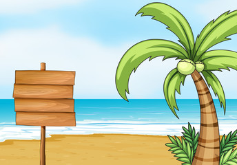 Signpost and coconut tree