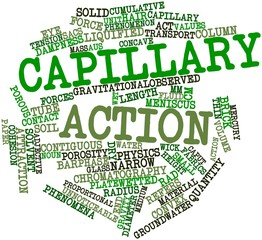 Word cloud for Capillary action