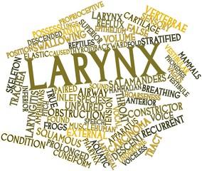Word cloud for Larynx