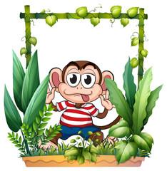 A monkey wearing a stripe shirt