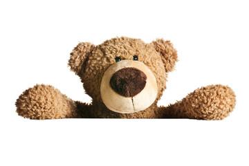 teddy bear behind a white board