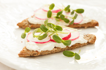sandwiches with radish and sunflower sprouts
