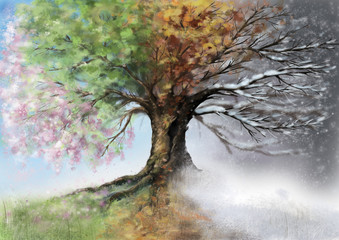 Digital illustration of four seasons tree