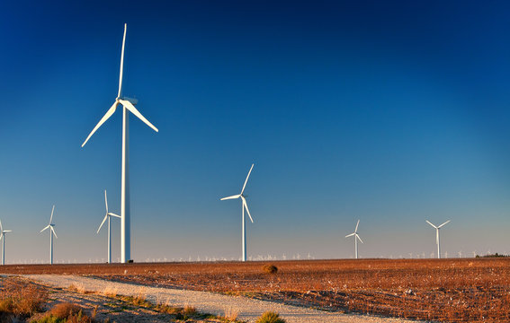 Wind Farm in a Cotton Field with angled light