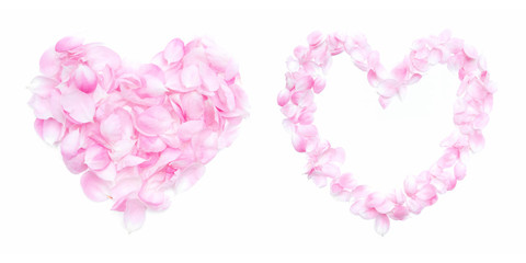 Petals Heart  isolated on white background